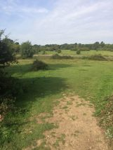 Grass course