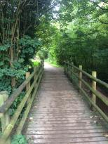 Daventry course footbridge