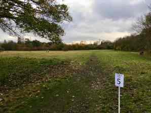 Grass Marshal point 5