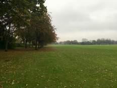 Grass start