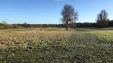 Nonsuch landscape 1