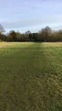 Course grass section