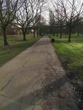 Course tamac path