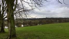 Brentwood landscape 1