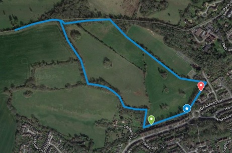 Henley course map