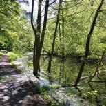 Ornamental Lake path route