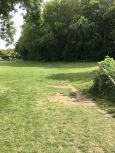 Castle Park course grass 2