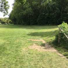 Castle Park course grass 2