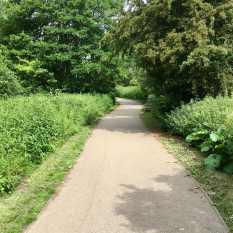 Castle Park course tarmac path
