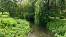 Castle Park River Stort