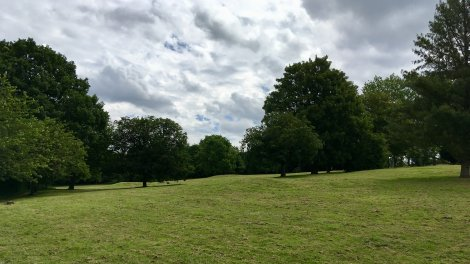 Harlow town park landscape 2