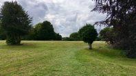 Harlow town park landscape 3