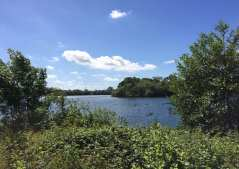 Aldenham Lake Cover