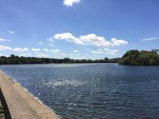 Aldenham Lake view2