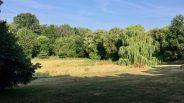 Barclay landscape 2