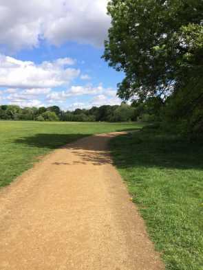 Beckenham landscape 2