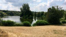 millennium lake