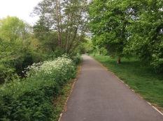 River Crane walk