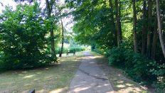 Tarmac paths course