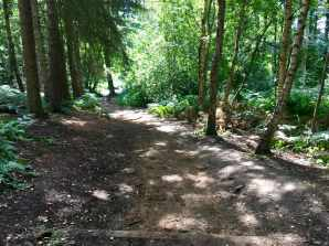 Course steep hill rushmere