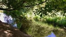 River Mimran
