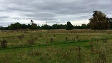 Houghton Hall landscape 2