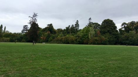 Houghton Hall landscape