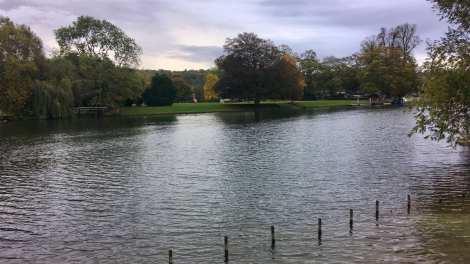 River Thames 1