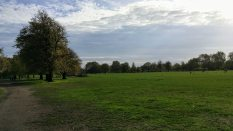 Clapham Common landscape