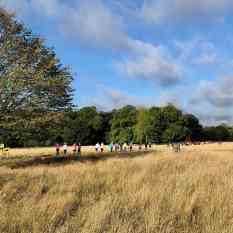 Wimpole course with runners